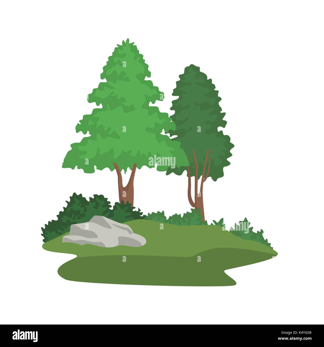 Beautiful forest scene - Stock Image