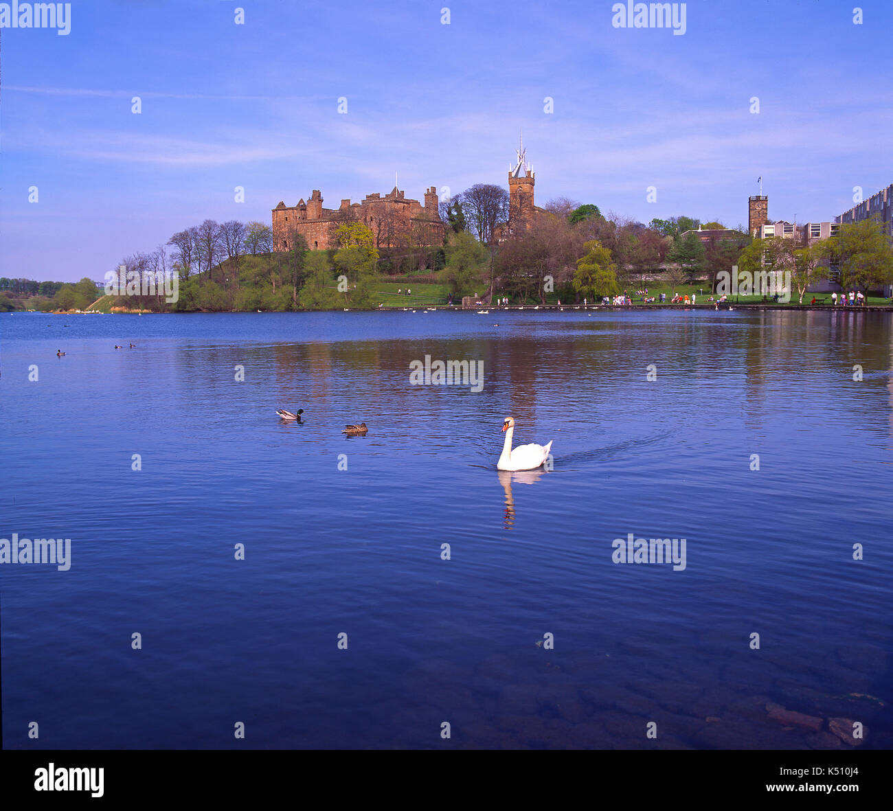 A peaceful spring view across Linlithgow Loch towards Linlithgow Palace, Midlothian, Scotland Stock Photo
