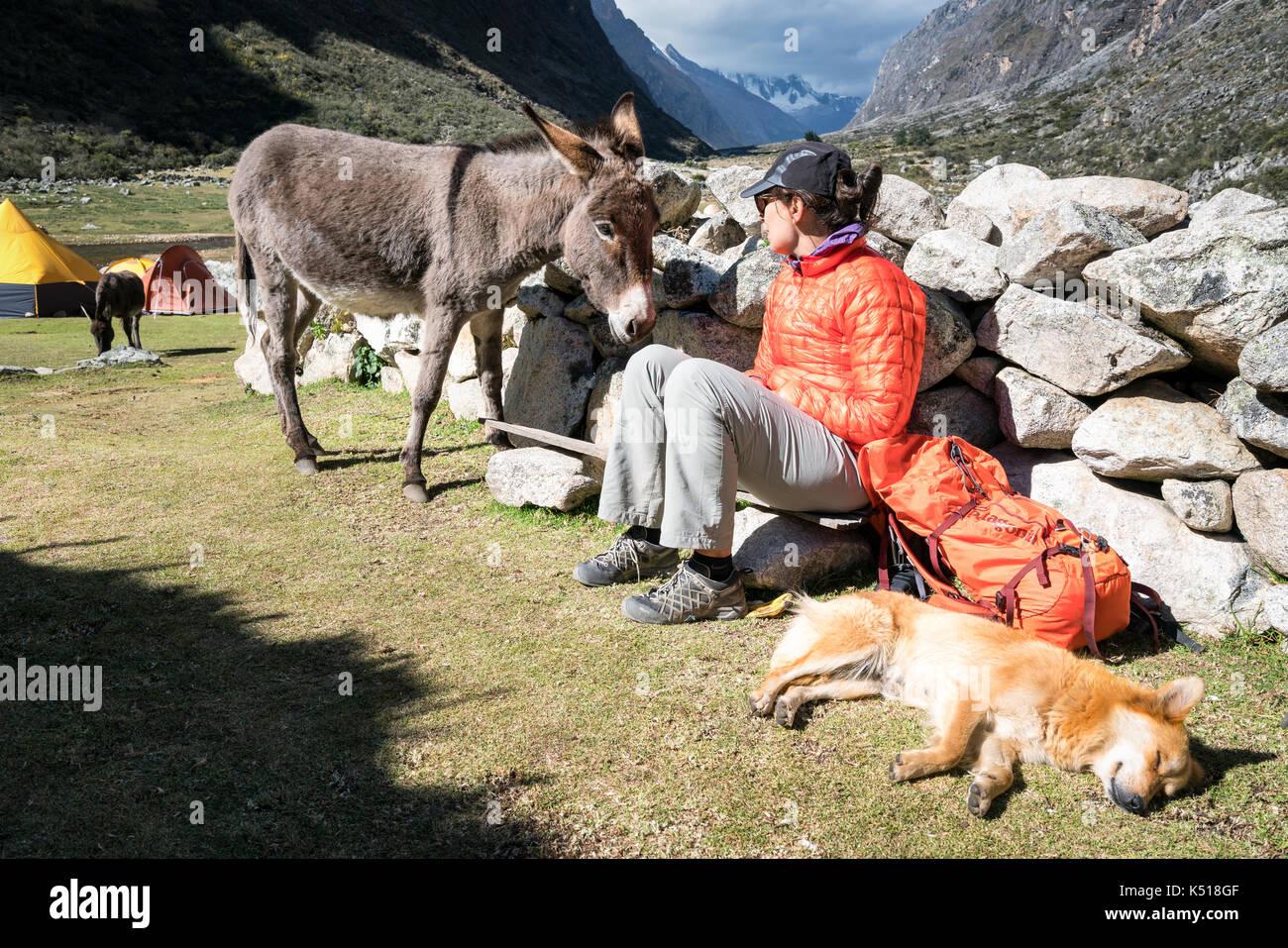 Having a break from trekking in Santa Cruz valley, Cordillera Blanca, Peru - Stock Image