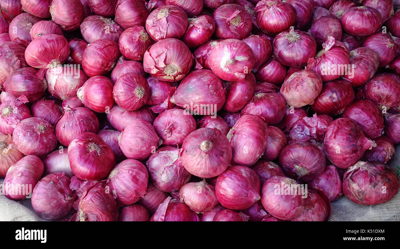 Big healthy vegan organic purple onions on market in Mahebourg, Mauritius. - Stock Image