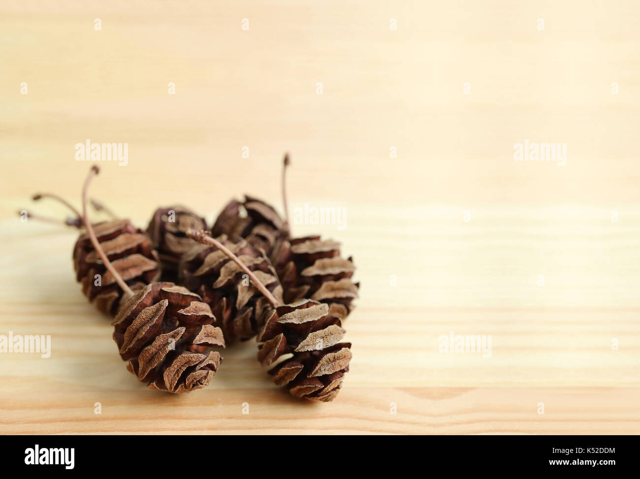 Small Candle Pine Cone Shaped Set of 4 Brown