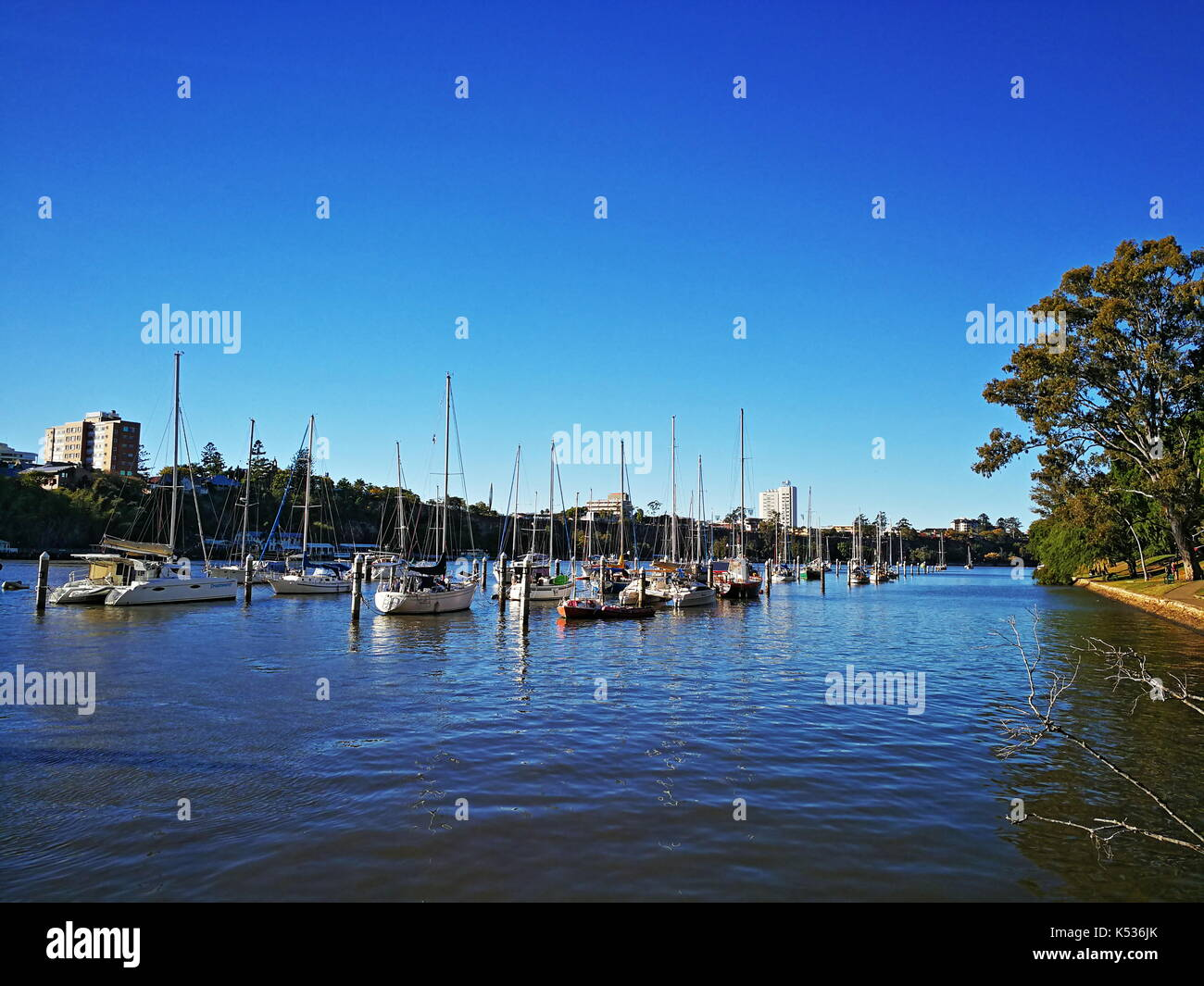 Sailing boats docked at the riverfront of the Brisbane River near Brisbane City Botanic Gardens, Queensland, Australia - Stock Image