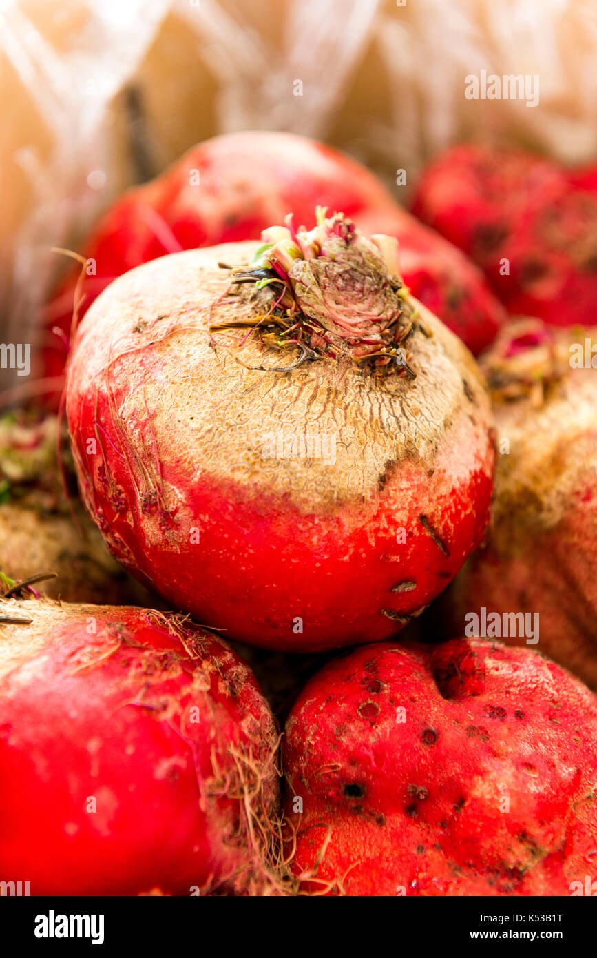 Beets, farmers market, outdoors - Stock Image