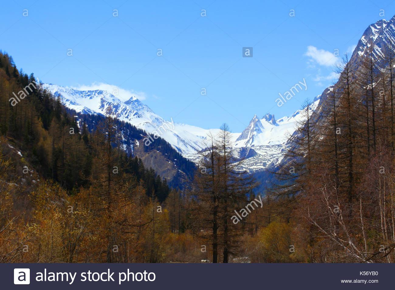 autumn colors on italian alps - Stock Image