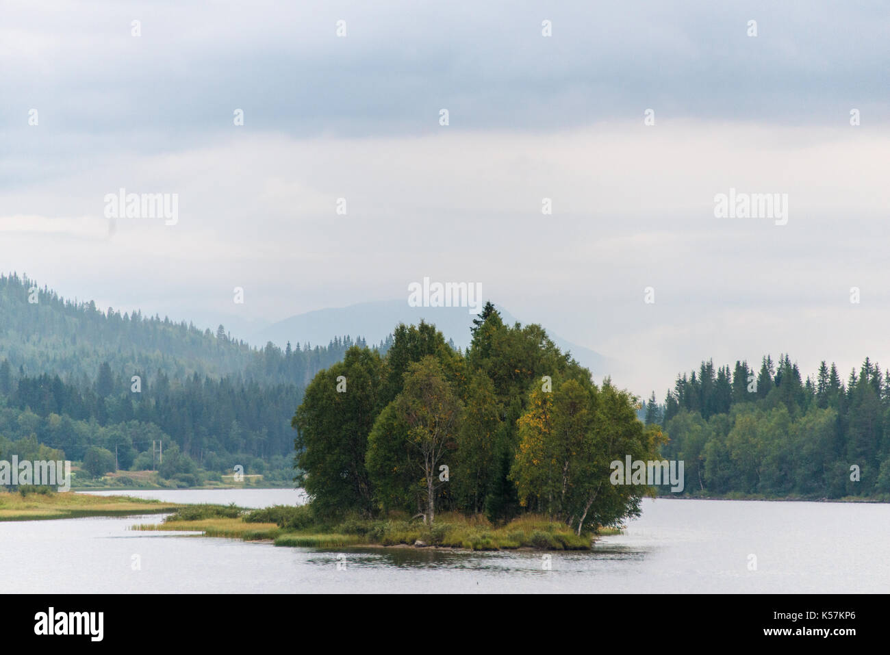 Small island with trees, Norway - Stock Image