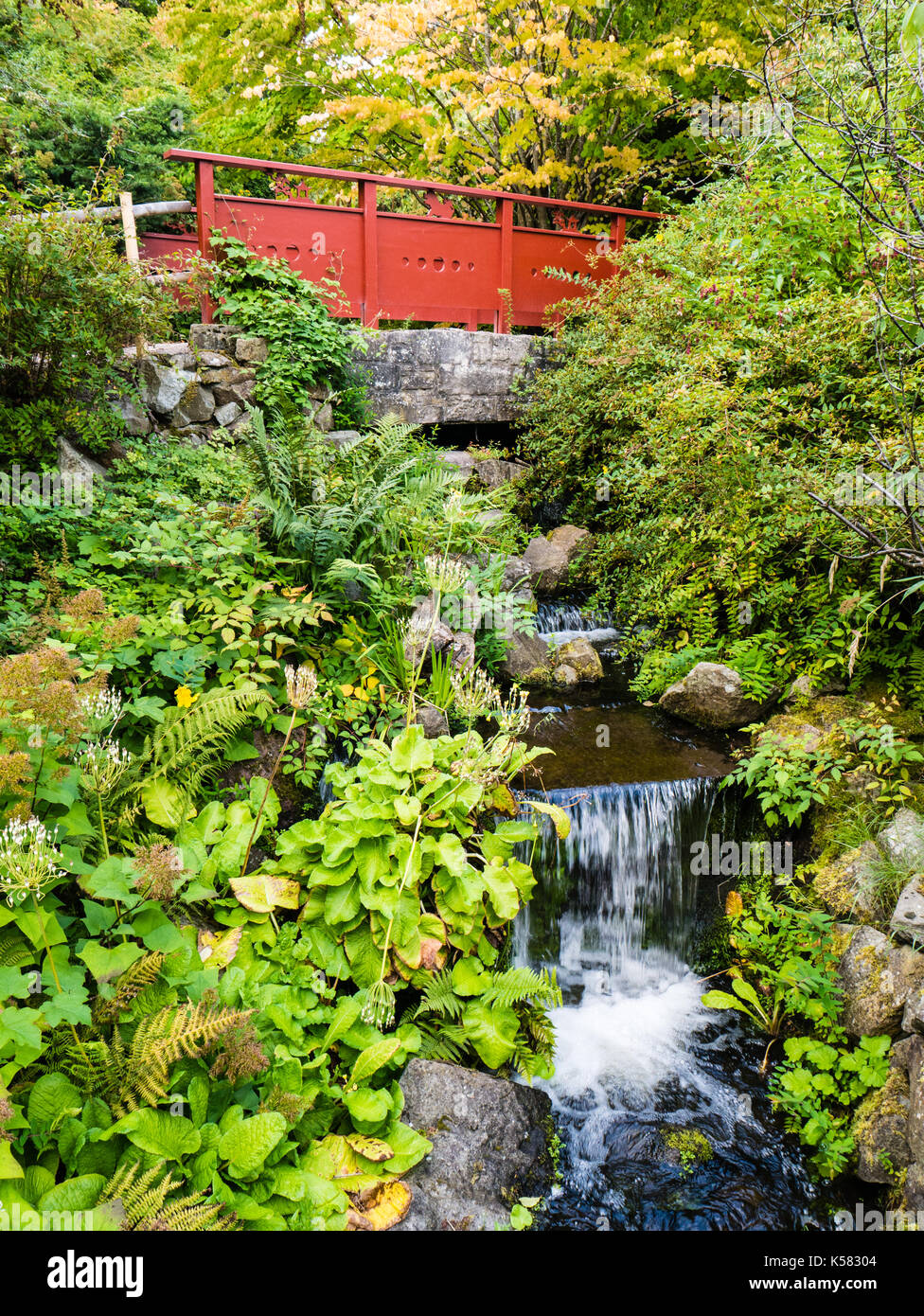 Red Bridge, Chinese Hillside, Royal Botanic Garden Edinburgh, Edinburgh, Scotland - Stock Image