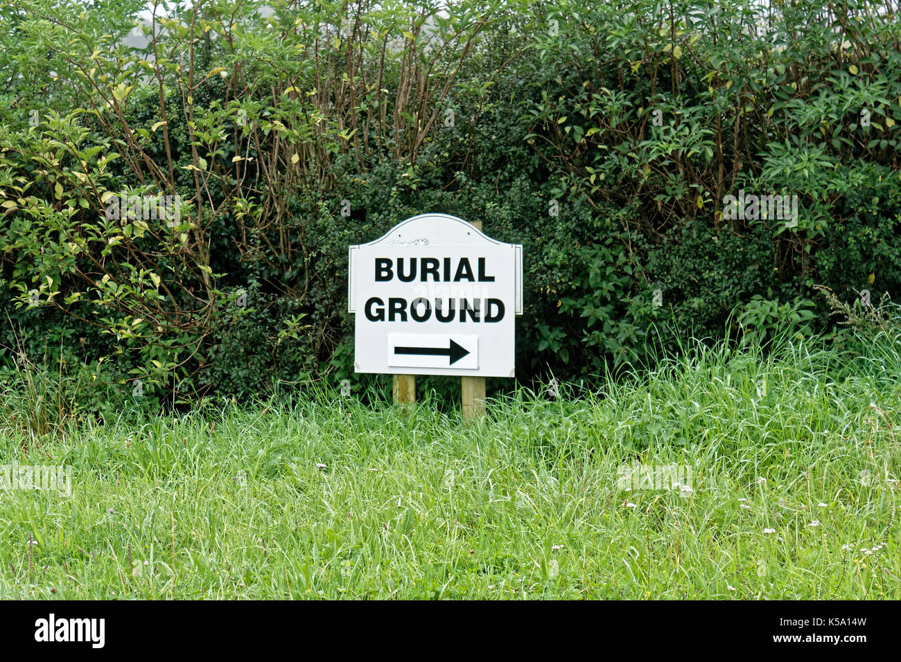 Burial ground sign in hedgerow. - Stock Image
