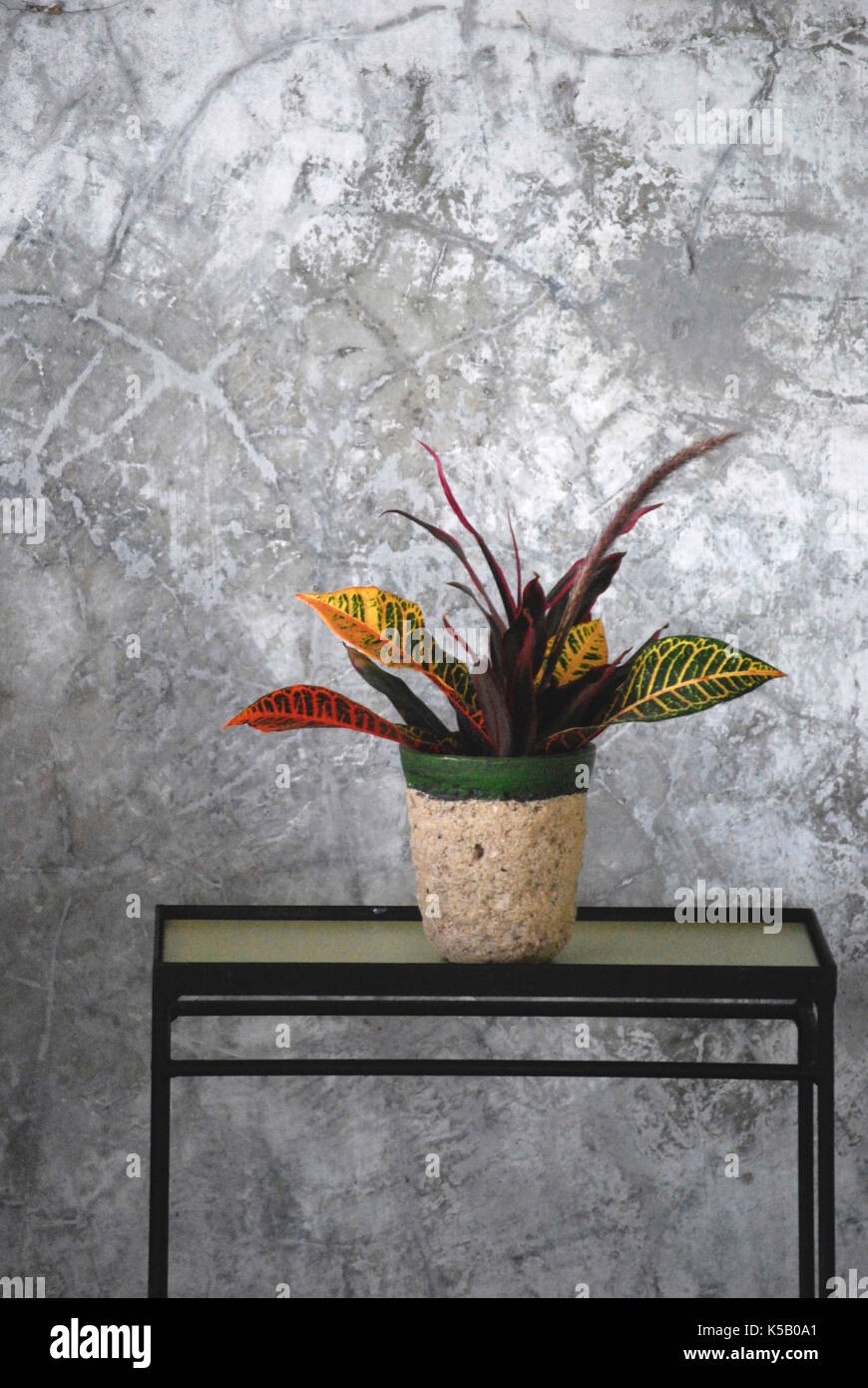 Interior Exotic Floral Arrangement sits on a table against a concrete wall - Yelapa, Mexico Stock Photo