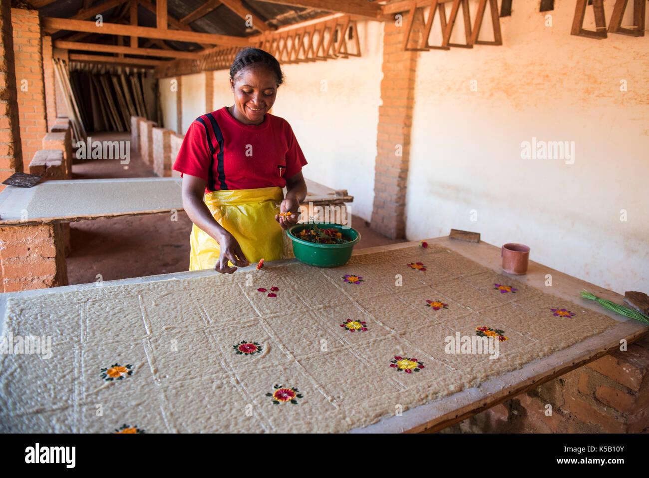 Artisan working in the Paper factory, Fabrique de papier Antemoro, Ambalavao, Madagascar - Stock Image