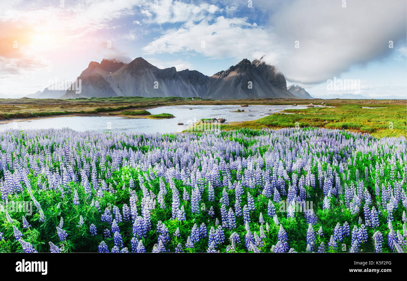 Picturesque views of the river and mountains in Iceland Stock Photo