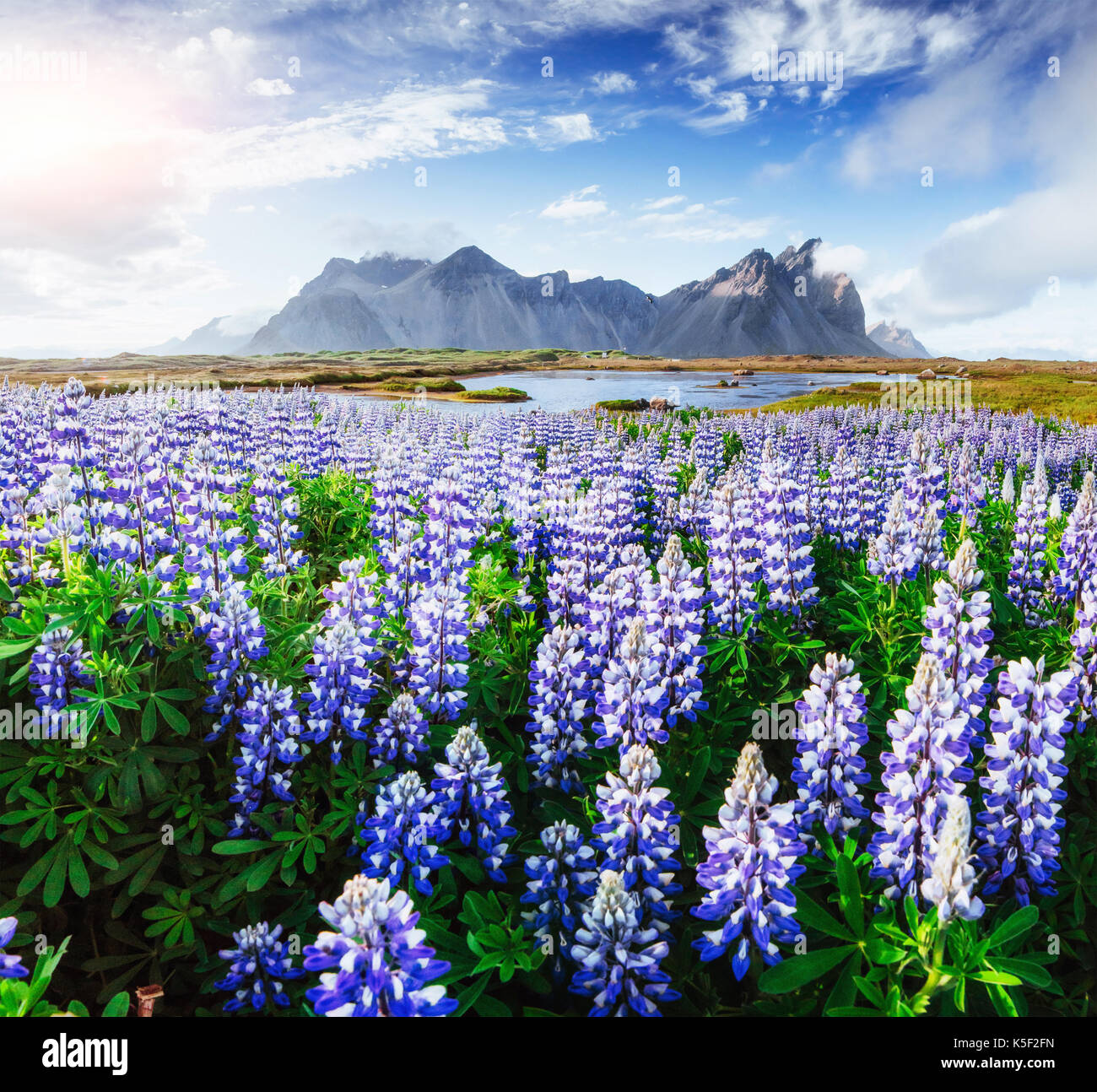 Picturesque views of the river and mountains in Iceland - Stock Image