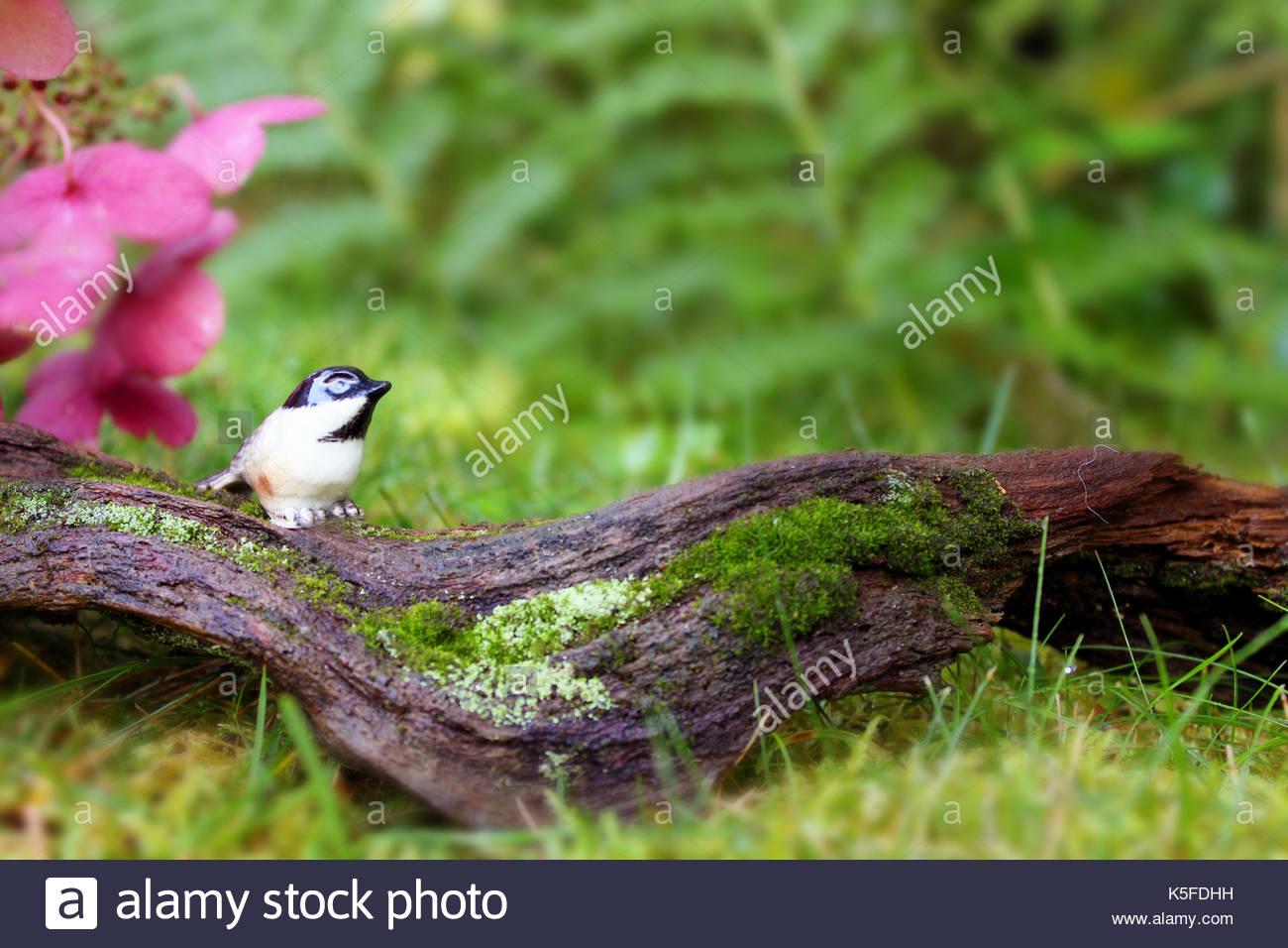 Chickadee  Mystical Garden - Stock Image