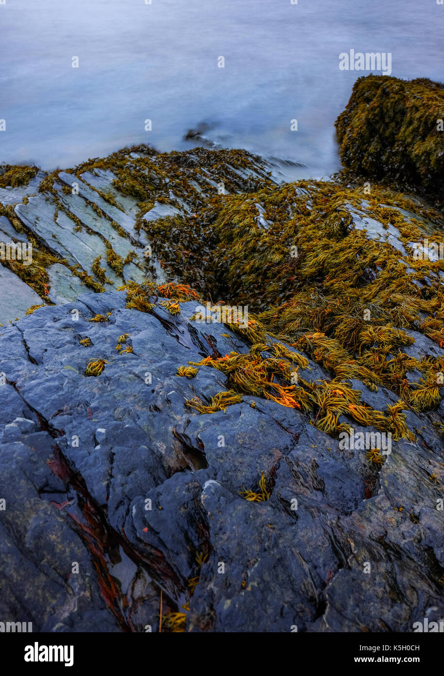Portmeirion coast with longtime exposure - Stock Image