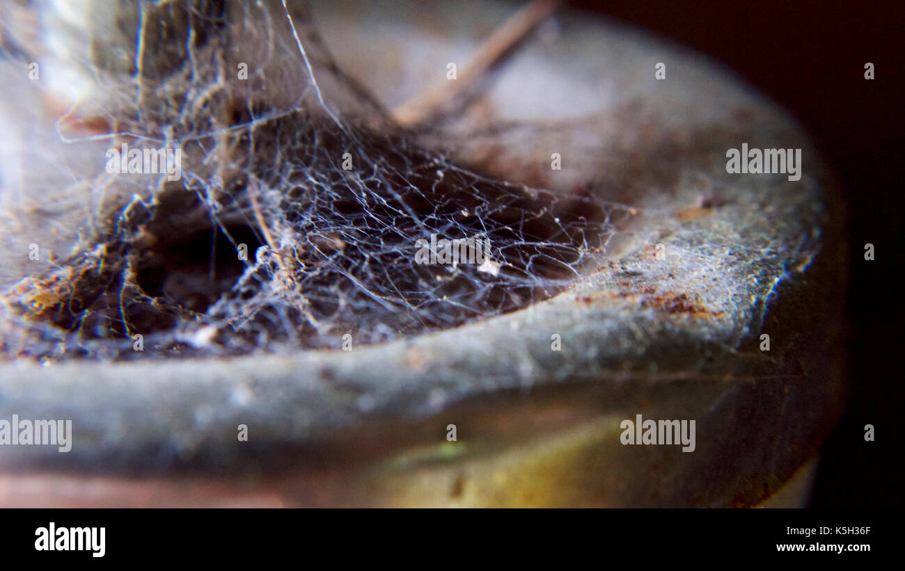 Nobody had been in the barn for months, the spiders had been busy. - Stock Image