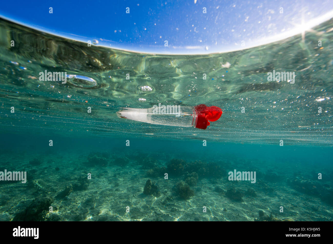 Discarded plastic bottle floating in ocean over coral reef - Stock Image