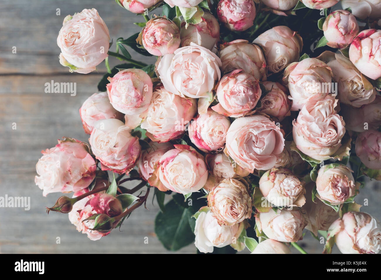 Pink shrub roses bouquet on wooden background beautiful wedding pink shrub roses bouquet on wooden background beautiful wedding shabby chic bouquet of flowers closeup view vintage toning izmirmasajfo