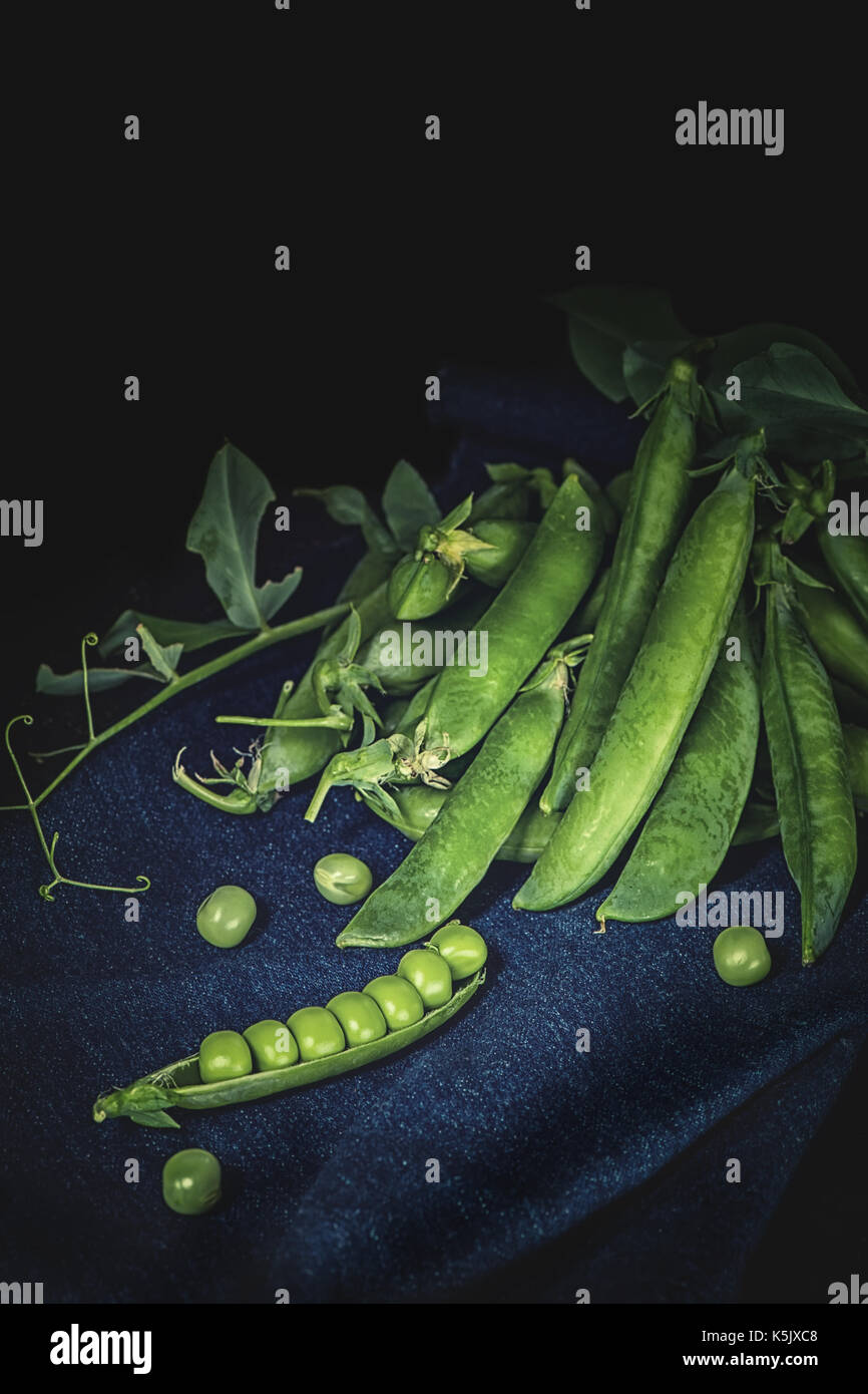 Pods of green peas on a dark background, low key. Art. - Stock Image