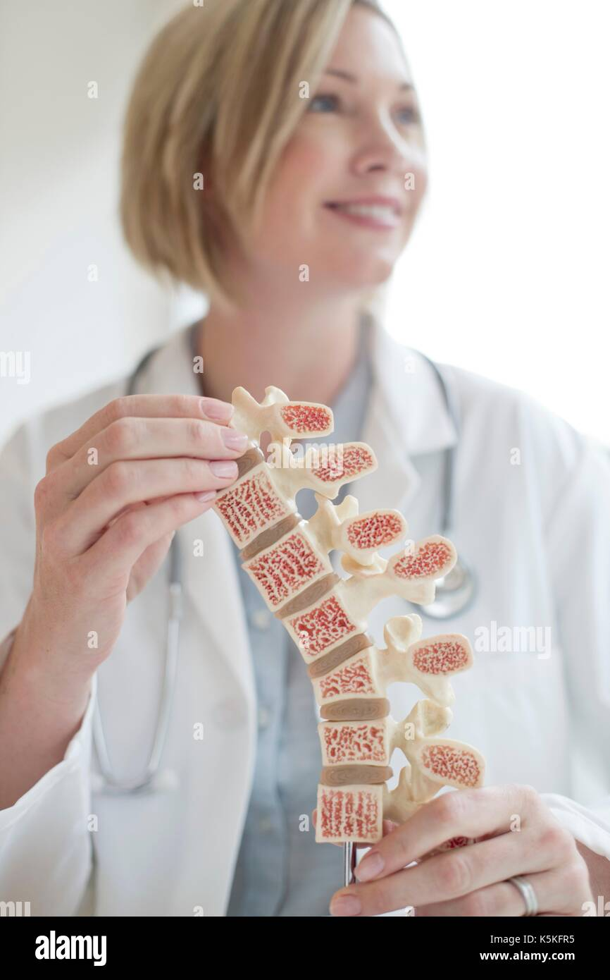 Female doctor holding anatomical model of the human spine. - Stock Image