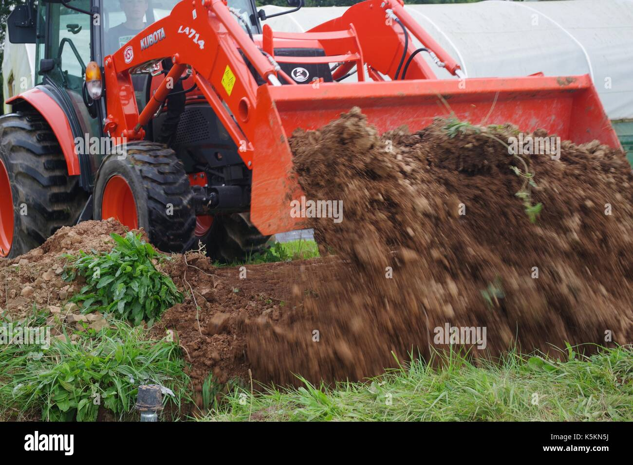 Kubota Compact Tractor, Backfilling a Trench on Lydcott Nursery, Mid ...