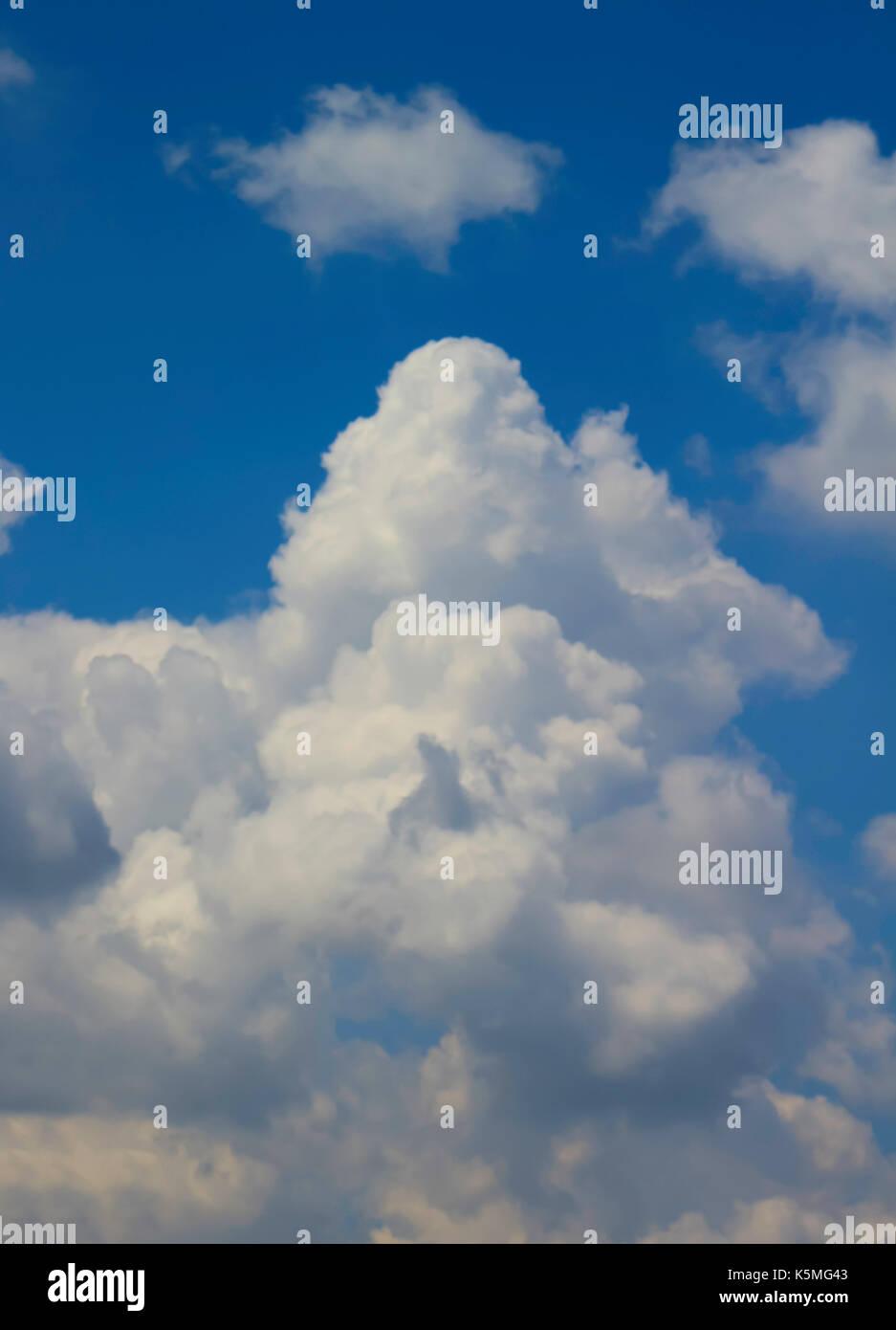 Puffy White Cumulonimbus Cloud - Stock Image