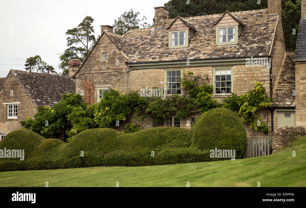 A clipped yew hedge in front of a cottage, Charlbury, Oxfordshire, England, UK - Stock Image
