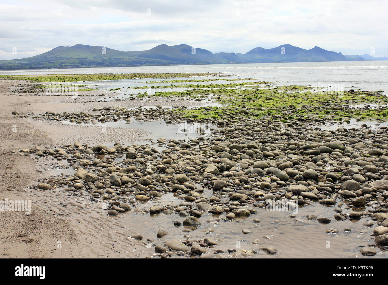 Pebbly Beach of Dinas Dinelle with Llyn Peninsula in Background - Stock Image