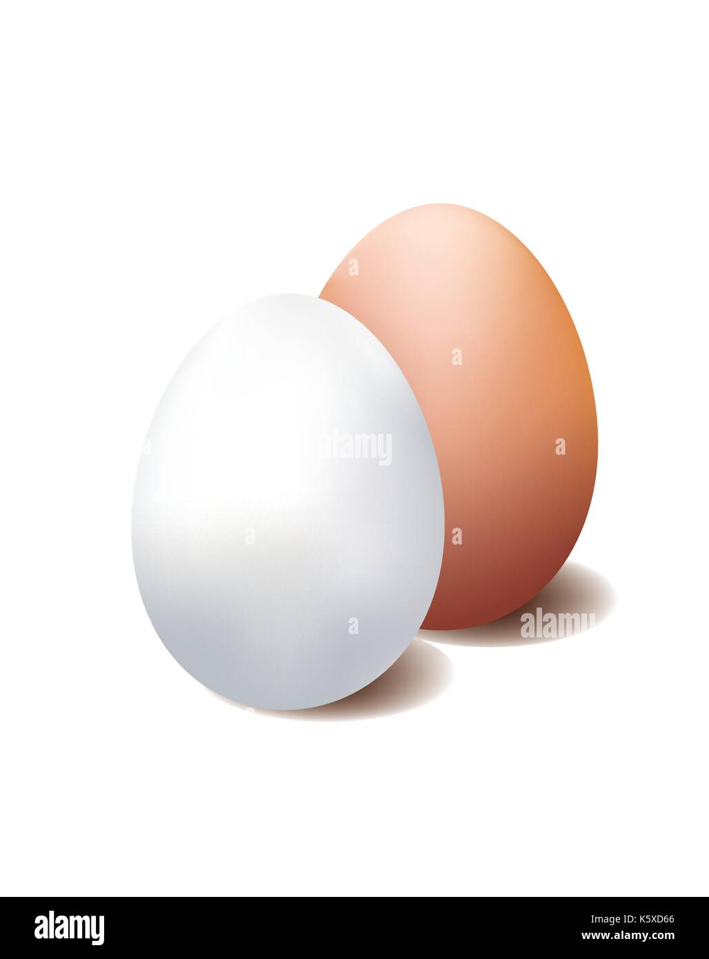 White and brown egg on white background - Stock Image
