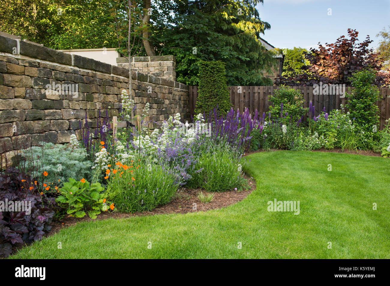 Corner of beautiful, private, traditional, landscaped, country garden, Yorkshire, England, UK - summer flowering plants bloom on herbaceous border. - Stock Image
