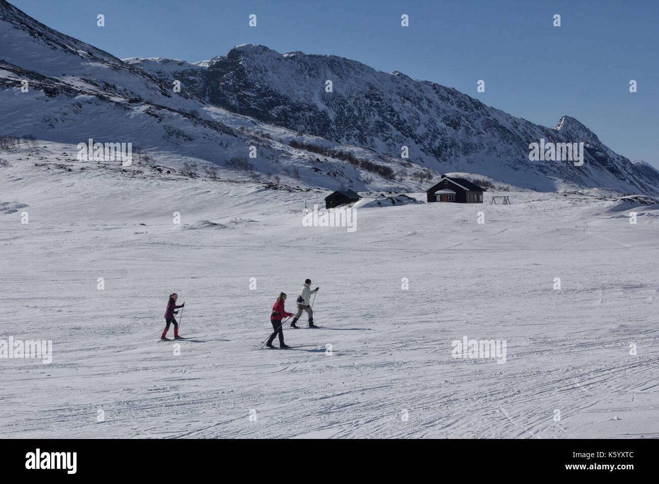 Winter in Jotunheimen National Park in Norway - Stock Image