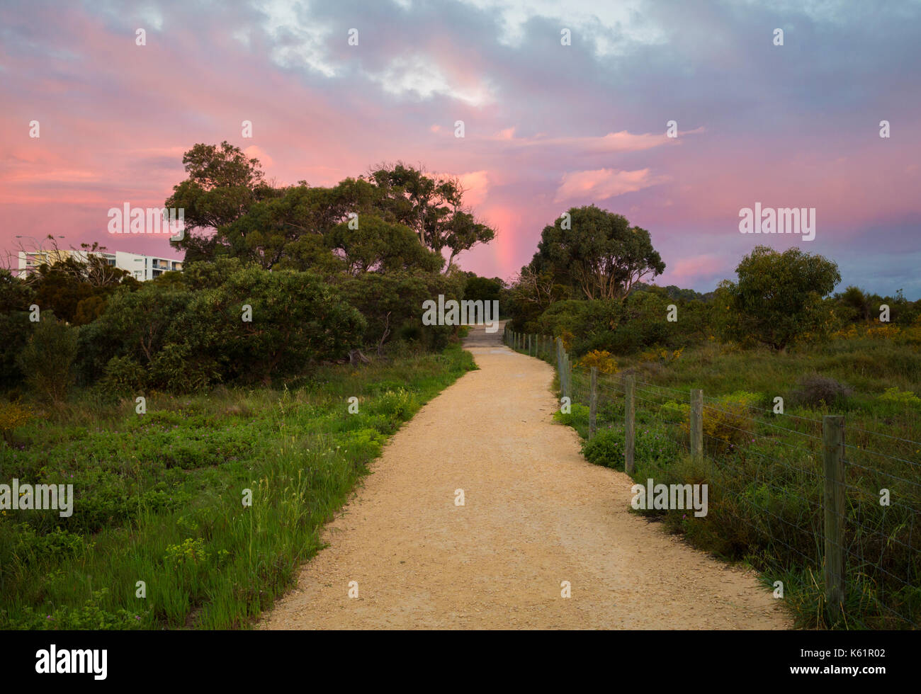 A path through Star Swamp Reserve suburban bushland - Stock Image
