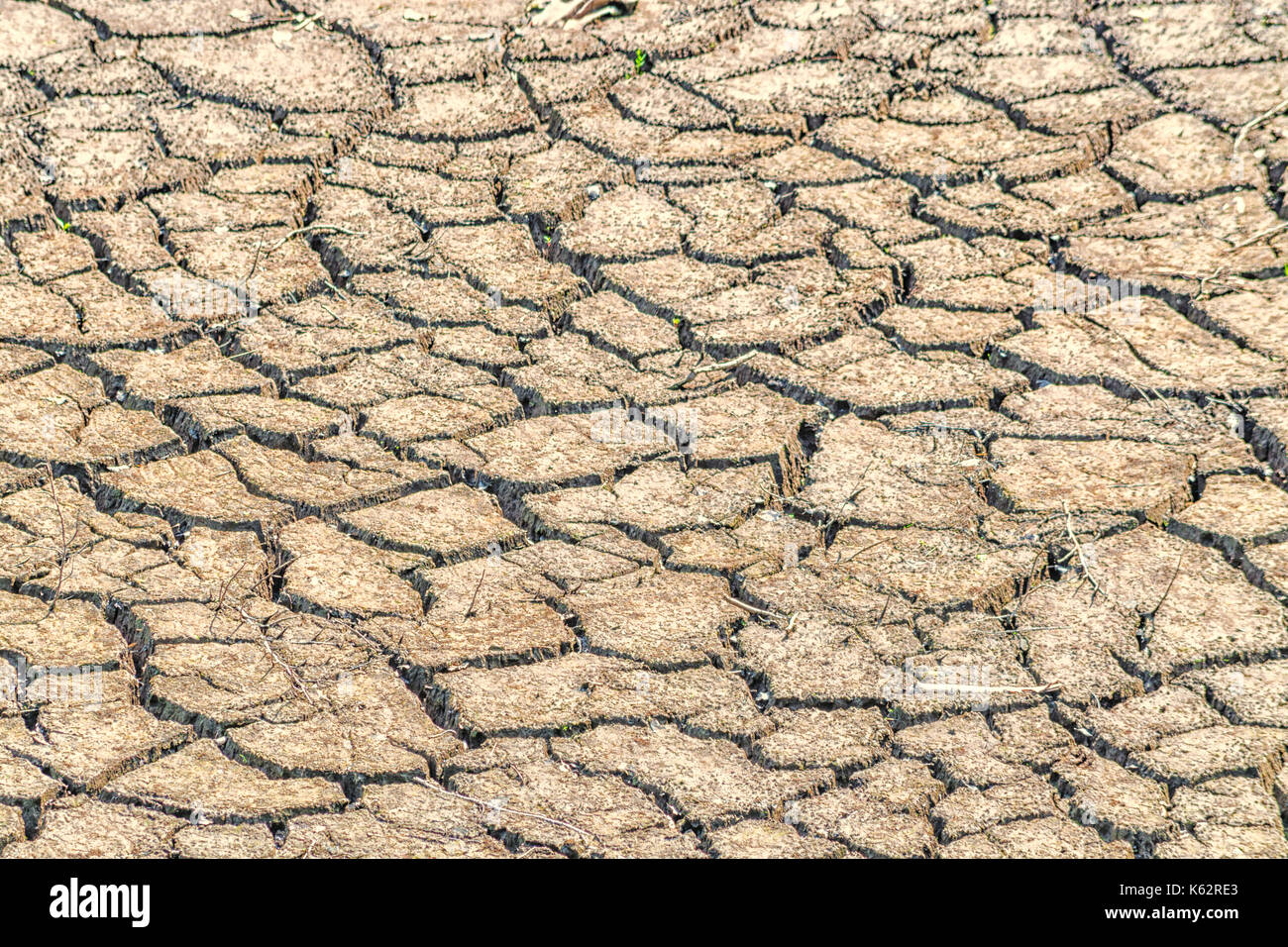 Cracked earth, soil large drought. Soil structure and dry mud, dried riverbed. - Stock Image