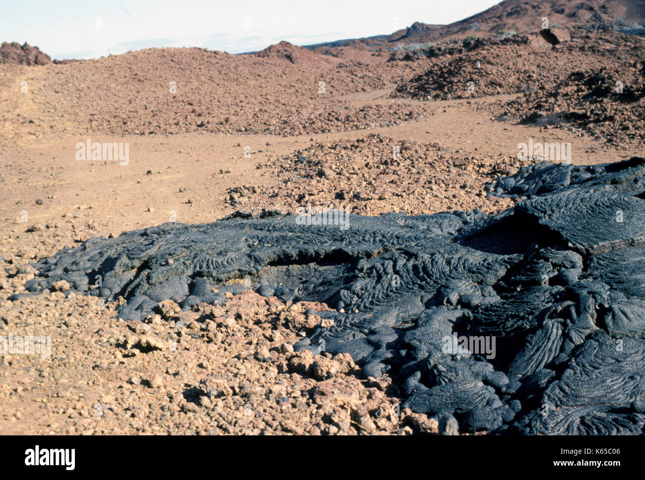 Pahoehoe Lava, Bartolome  Island, Galapagos Islands, basaltic, ropy surface, showing flow on ground - Stock Image