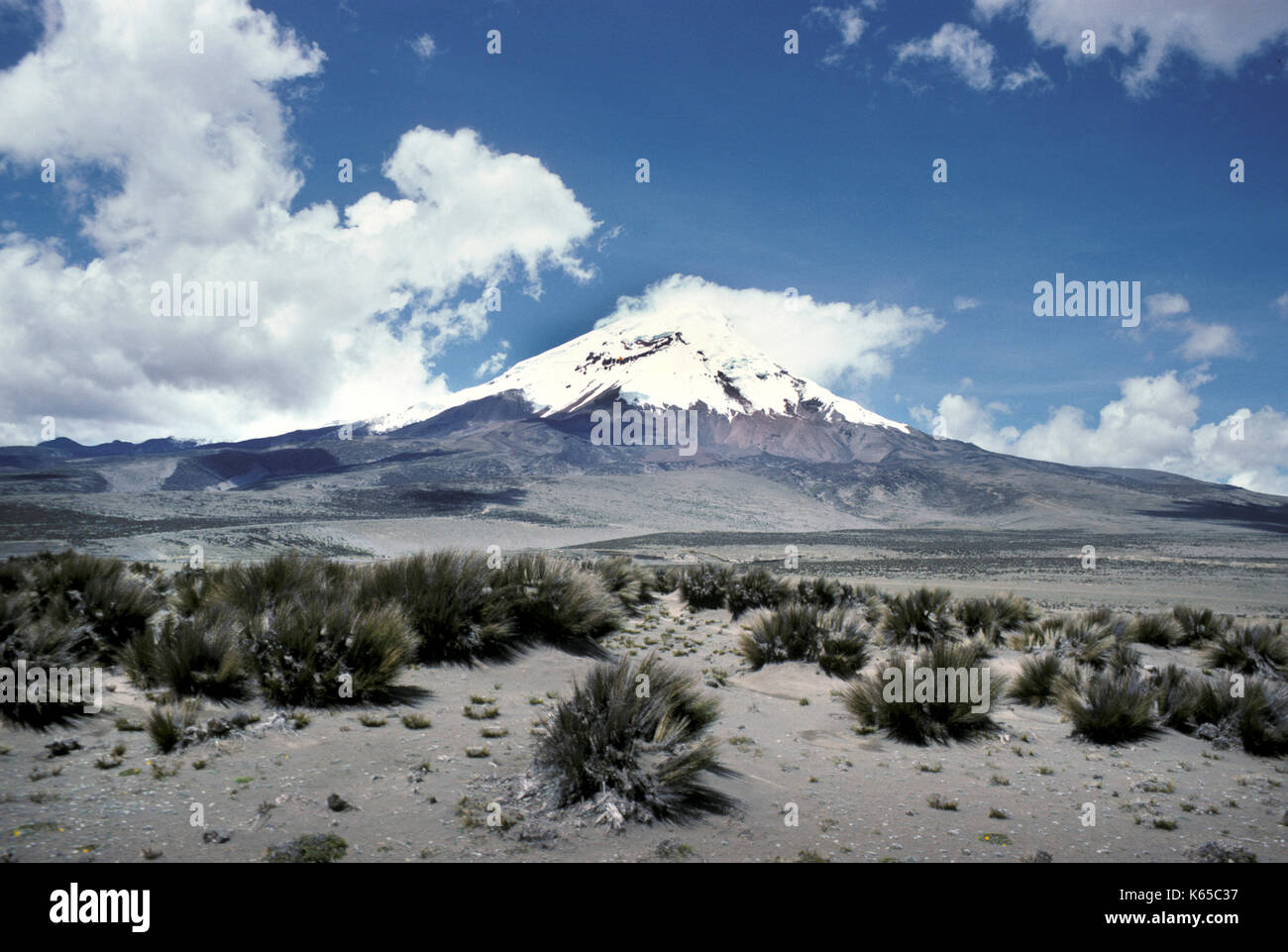 Chimborazo Volcano, Ecuador, High Plateau, South America, currently inactive stratovolcano located in the Cordillera Occidental range of the Andes, hi - Stock Image