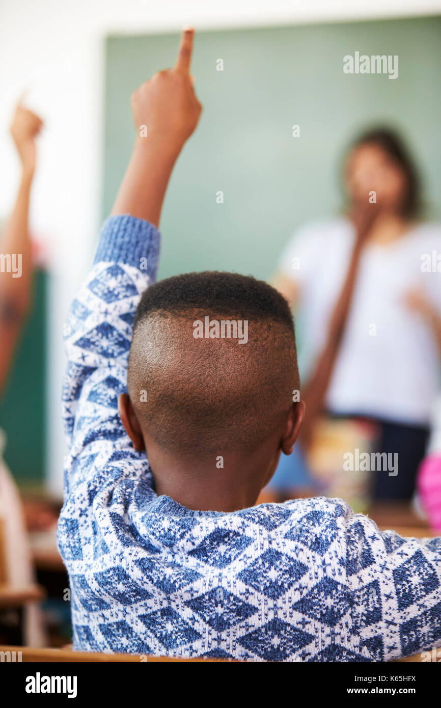 Back view of boy raising hand at an elementary school lesson - Stock Image