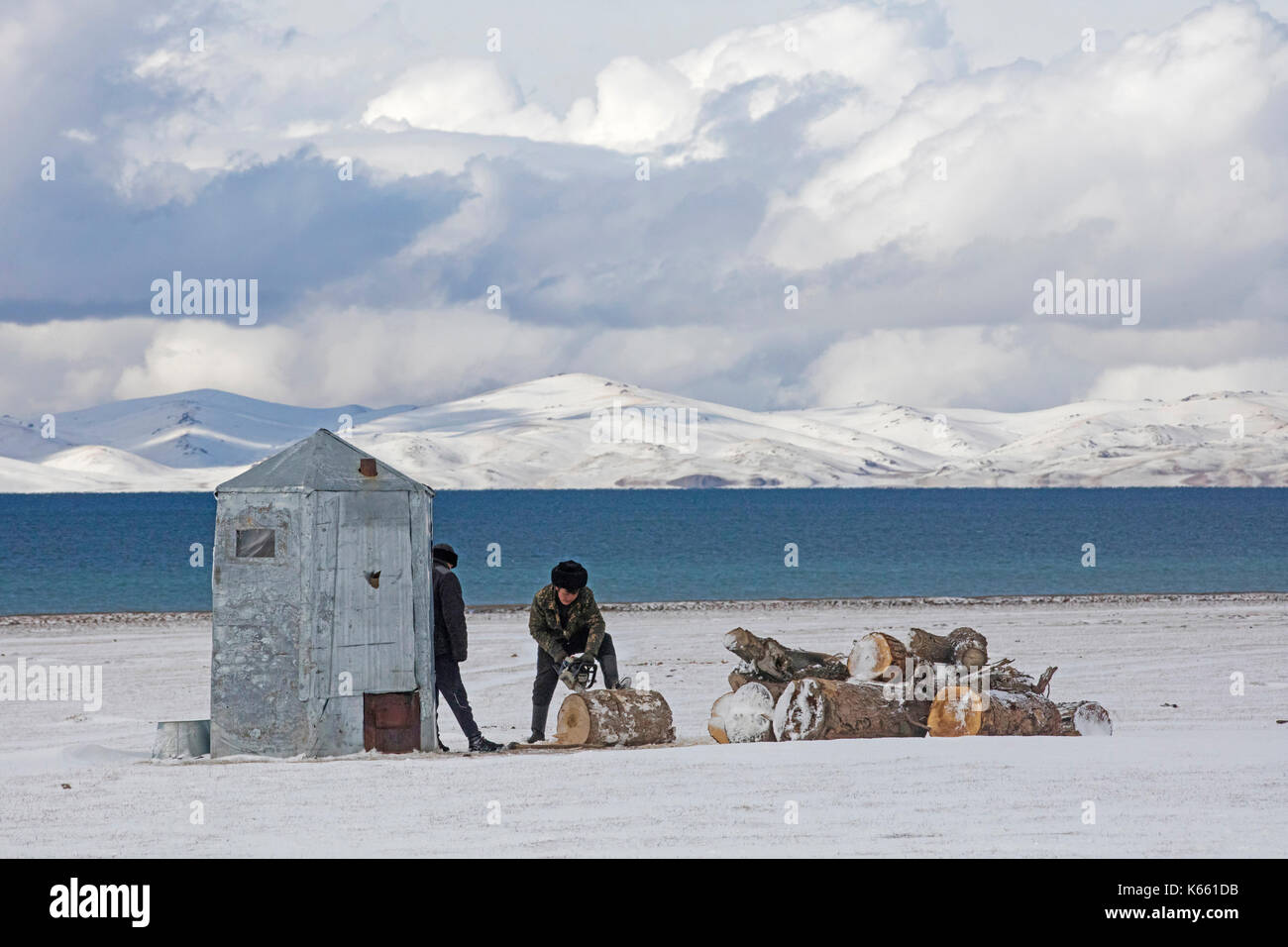 Kyrgyz men cutting wood with chainsaw in the snow along Song Kul / Song Kol lake in the Tian Shan Mountains, Naryn Province, Kyrgyzstan - Stock Image