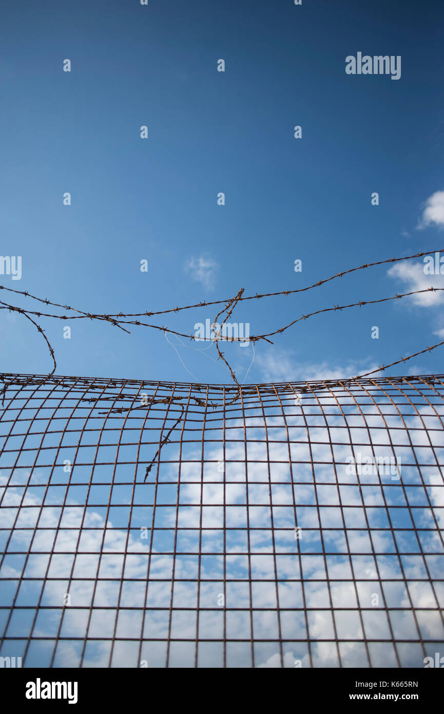 Barbed wire fence with blue sky - Stock Image
