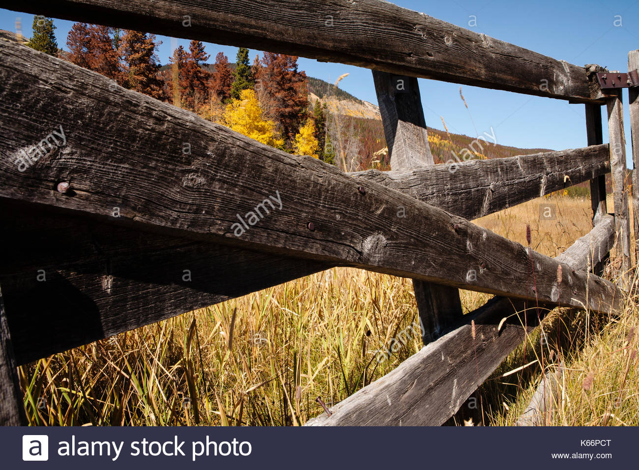 farm fence gate. Perfect Gate Old Colorado Farm Fence Gate On Farm Fence Gate