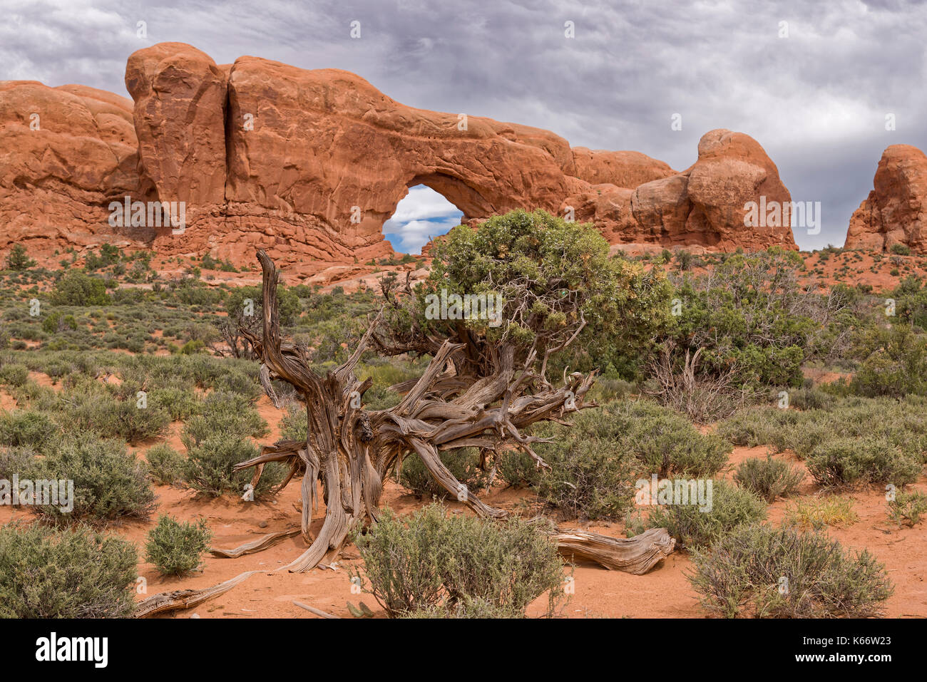 Arches of red rock. Arches National Park, Moab, United States of America. Geologic Formations - Stock Image