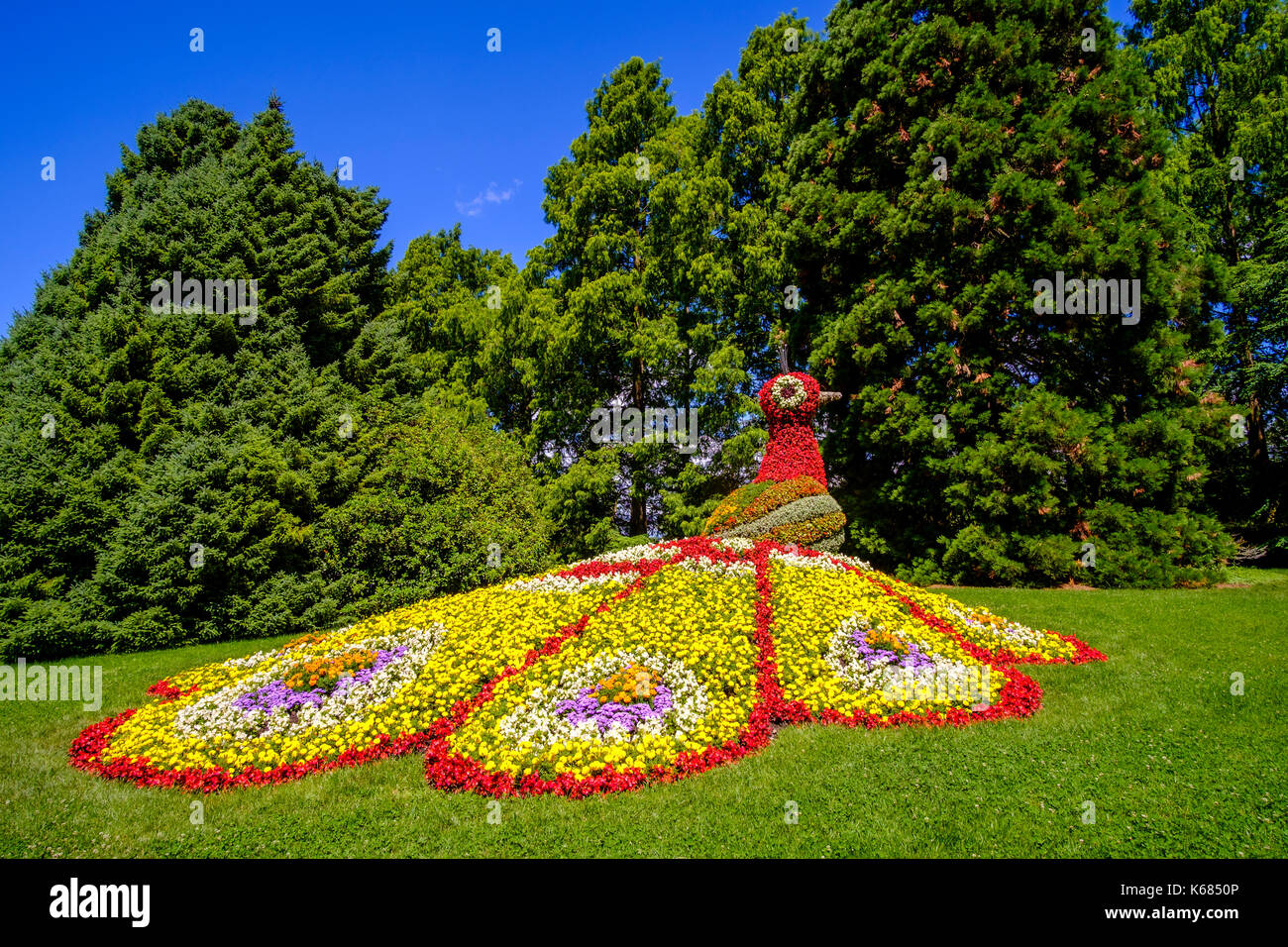 A colorful statue of a peacock is made by flowers - Stock Image