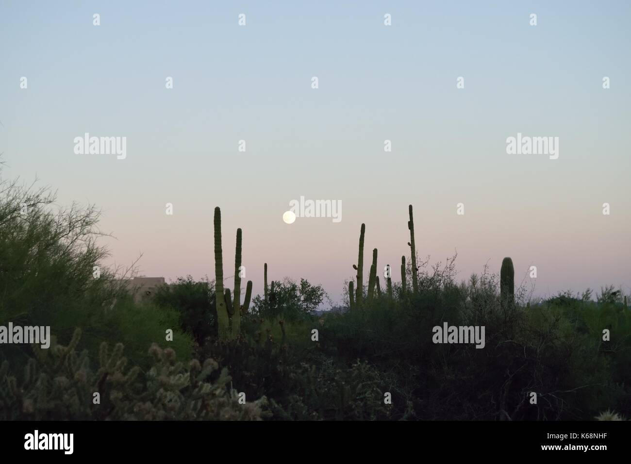 full moon rising over the southwestern desert - Stock Image