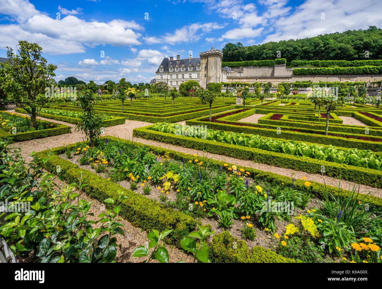 France, Indre-et-Loire department, Château de Villandry, ornamental vegetable growing in the Kitchen Garden - Stock Image