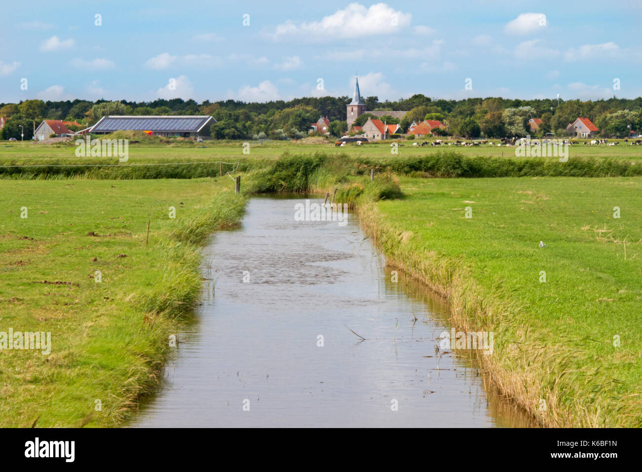 Dutch landscape with a broad ditch between meadows, in the distance a church tower and red tiled roofs of farmhouses - Stock Image