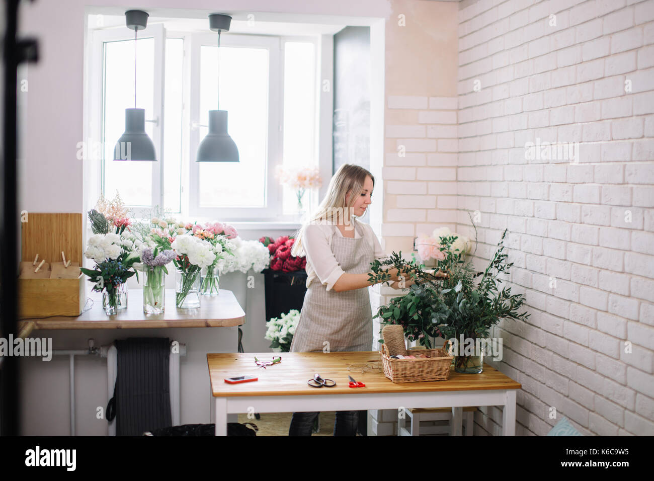 florist takes flower from the Bush peonies - Stock Image