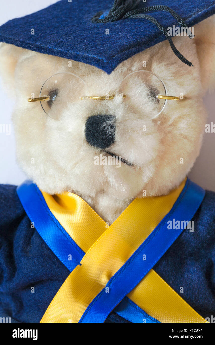 Soft cuddly teddy bear wearing mortarboard, robe, ribbons and glasses for graduation - Stock Image