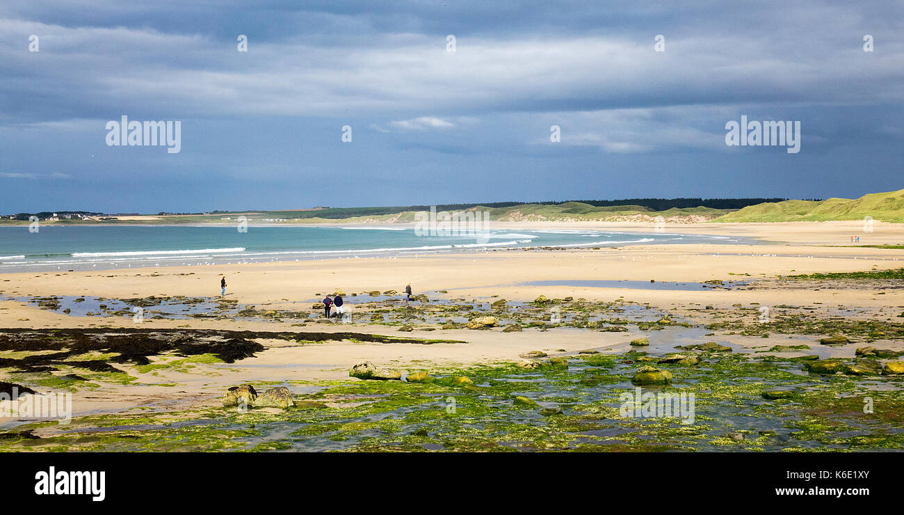 Dunnet Bay, Caithness, Scotland - Stock Image
