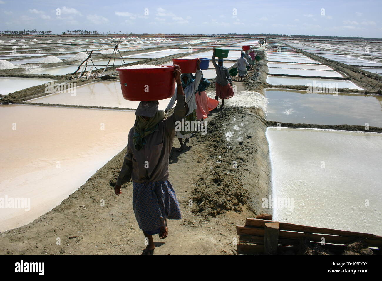 The enthusiastic salt harvesters of Puttlam dotted endless stretches of shallow glistening water - Stock Image