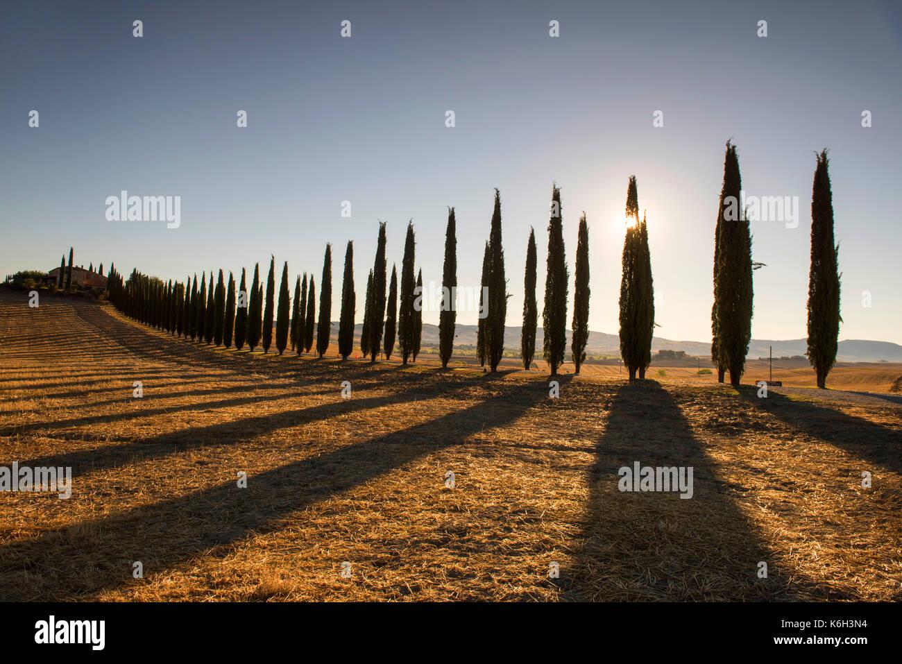 https://c8.alamy.com/comp/K6H3N4/early-morning-light-and-shadows-at-poggio-covili-near-bagno-vignoni-K6H3N4.jpg