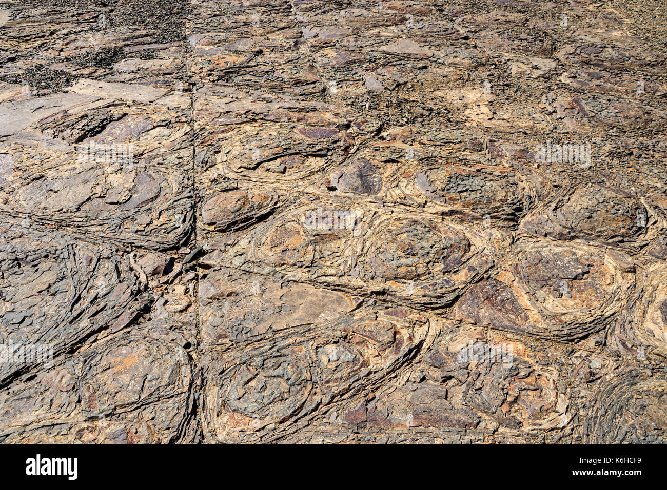 An unusual rock formation in Southern African savanna - Stock Image