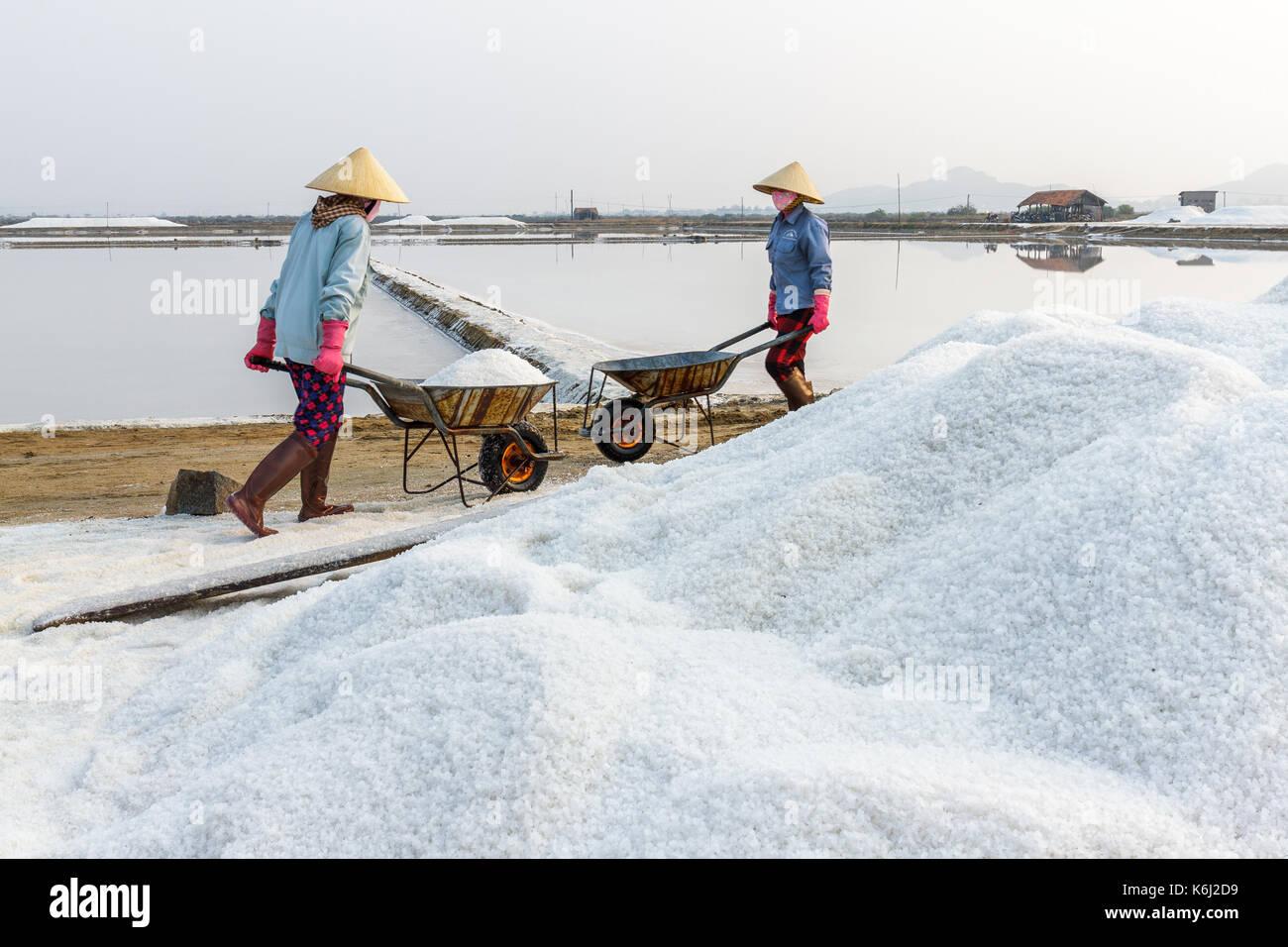 Workers push wheelbarrows at the Hon Khoi salt fields in Nha Trang, Vietnam. - Stock Image