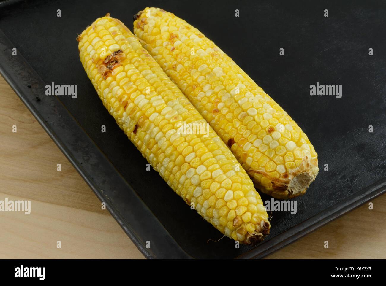 Two ears of blackened roasted corn on baking sheet - Stock Image